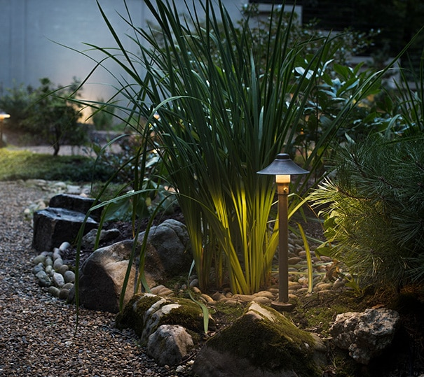 Landscape Lighting in Garden